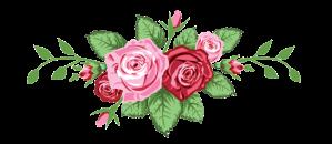 roses-divider-550