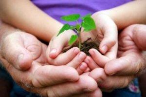 positive-parenting-nurture