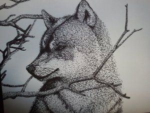 wolf___stippling_with_pen_by_ryuhigarashi-d4gx0v5