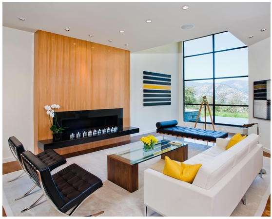 Modern-style-living-room